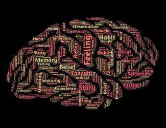German-Universities-Study-Psychology-696x537